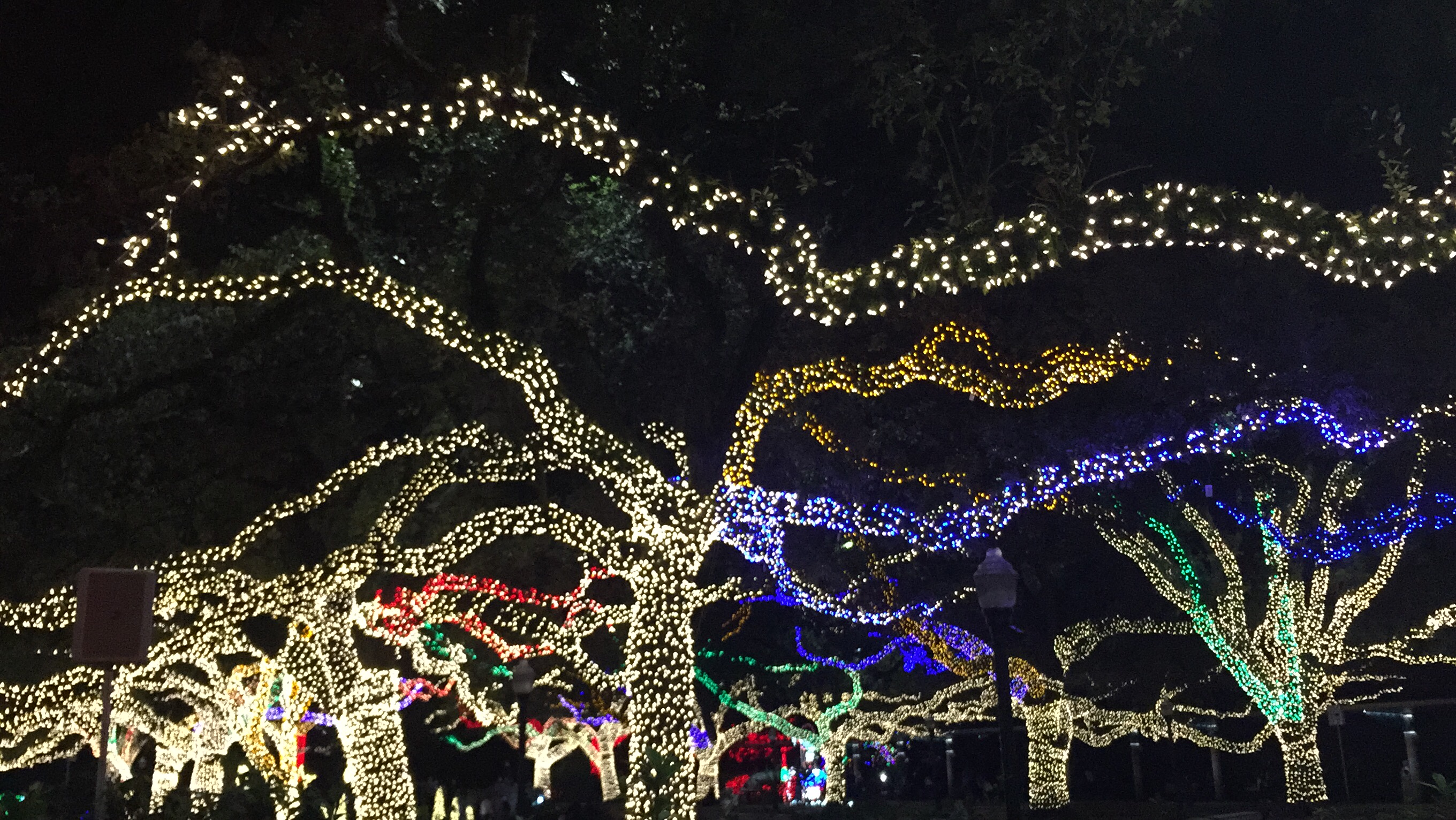 Christmas Lights Houston