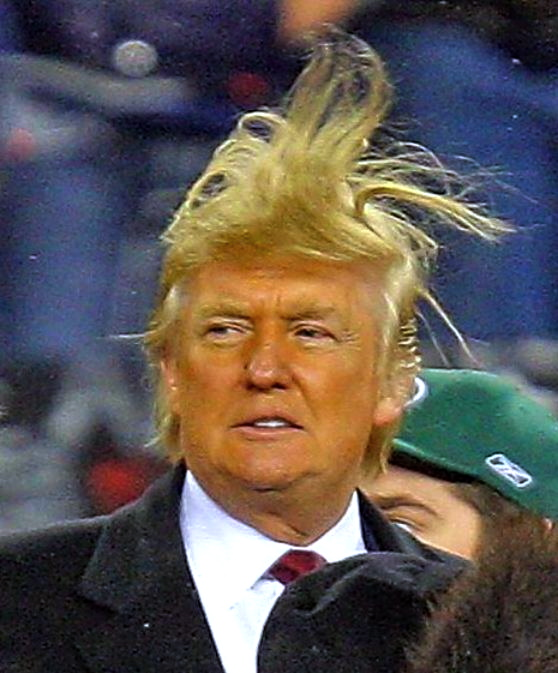 donald-trump-bad-hair-photo-1
