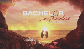 (We're Over) The Bachelorette: How to Throw a Bachelor in Paradise Premiere Party (Week 9)