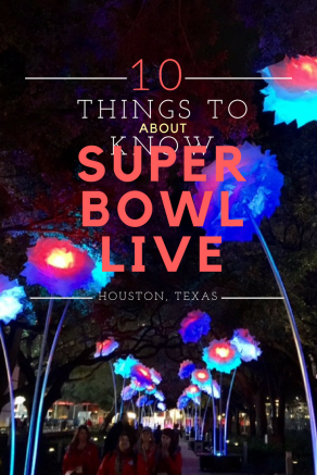 Super Bowl Live Volunteer Houston Texas