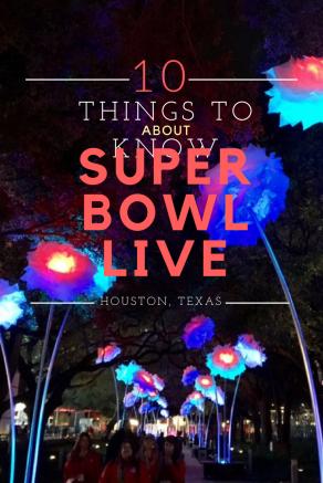 Super Bowl Live Volunteer Houston Texas