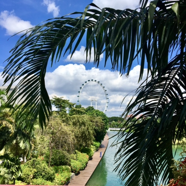 Singapore 24 Hour Travel Guide