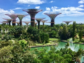 A Houstonian's Guide: Singapore in 24 Hours
