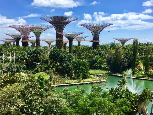 Singapore 24 Hour Travel Guide