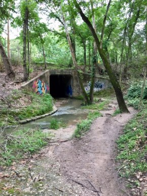 5 Places to Trail Run in Houston