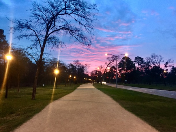 memorial-park-picnic