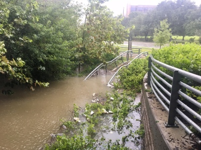 harvey flood photos buffalo bayou houston