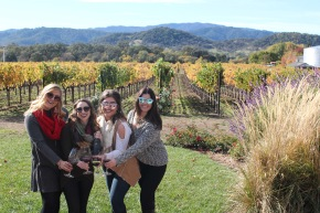 5 Must-Visit Wineries in Napa Valley
