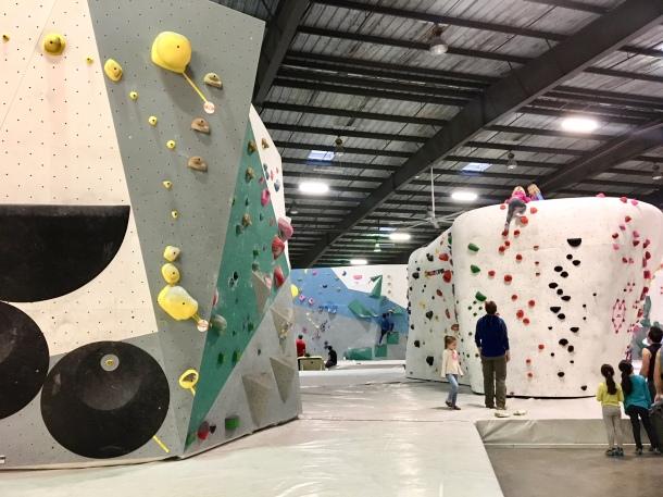 rock climbing houston momentum