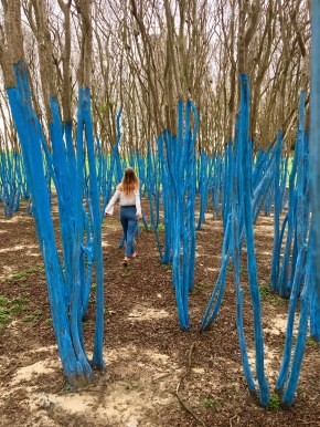 The Blue (and Green!) Trees ARE BACK at Waugh andMemorial