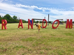 A Houstonian's Guide: A Weekend in Boerne