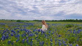 Where to Take Pictures of Bluebonnets in Texas