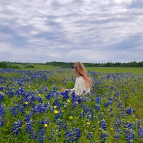Where to Take Pictures of Bluebonnets inTexas