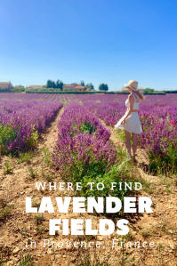 where to find lavender fields in provence valensole